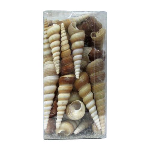 Морские ракушки (450гр) 280р